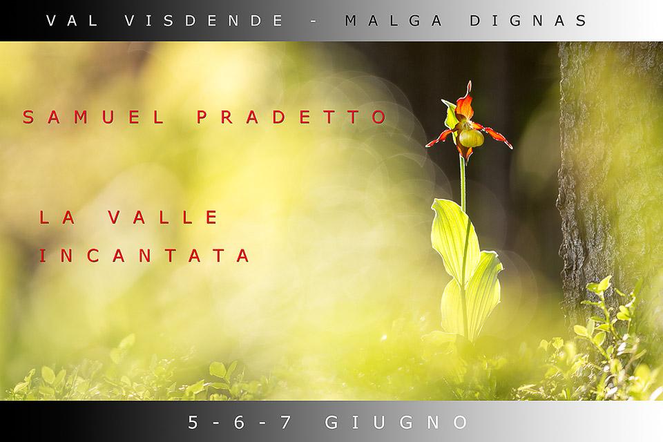 Locandina workshop - VAL VISDENDE PARADISO SELVAGGIO